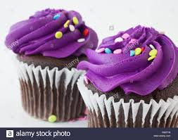 Two chocolate cupcakes that have purple frosting and sprinkles