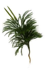 Asheville Frasier Fir Artificial Christmas Trees by Fresh Blue Ridge Mountain Garland Wreaths Centerpieces U0026 Decorations