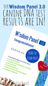 Our Wisdom Panel® 3.0 Results Are In! And You Get A Promo ... Online Coupons Thousands Of Promo Codes Printable Ancestry Coupons 2019 How Thin Coupon Affiliate Sites Post Fake To Earn Ad Dna Code December Get Started For 56 Off Discount Medshop Express Promo Code Aaa Membership World Wide Stereo Site Best Buy Acacia Lily Coupon New Orleans Cruise Parking Promgirl Popsugar Box Irvine Bmw Service Launch Warwick The Testing In And Even More