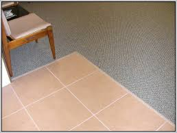 Ceramic Tile To Carpet Transition Strips by Carpet Transition Strip Carpet Transition Strip Aluminium