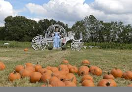 Ms Heathers Pumpkin Patch Louisiana by In Hammond A Family Tradition Brings Kids Back To The Farm