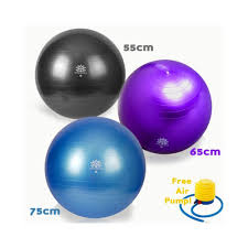 Gaiam Balance Ball Chair Replacement Ball by Furniture Appealing Blue Gaiam Balance Ball Chair For Kids Dining