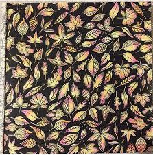 Jardim Secreto Floresta Encantada Adult ColoringColoring BooksJohanna Basford Secret GardenColor