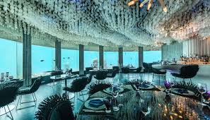 104 The Water Discus Underwater Hotel 10 S In World In 2021 For A Stay With Sharks