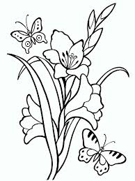 Gladiolus Flower Coloring Pages 4