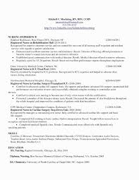Nursing Resume Examples Labor And Delivery Elegant 45 Beautiful Nurse Of