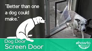 Doggie Door Insert For Patio Door by How To Make A Screen Door Doggy Door Youtube