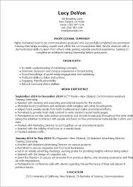 Amusing Resume Summary Examples Trainer On Professional Training Internship Templates To Showcase Your Talent