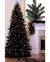 75 Pre Lit Slim Black Ashley Spruce Artificial Christmas Tree
