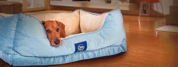 Cuddler Dog Bed by Buy Serta Pet Beds
