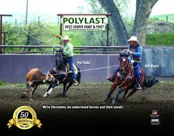 Poured Rubber Flooring For Horses by Polylast Surfaceguard U2014 Carl U0027s Trailer Sales