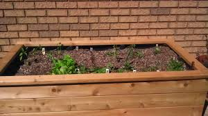 12 Innovative Self Watering Planters Ideas And Tutorials   The ... How To Build A Wooden Raised Bed Planter Box Dear Handmade Life Backyard Planter And Seating 6 Steps With Pictures Winsome Ideas Box Garden Design How To Make Backyards Cozy 41 Garden Plans Google Search For The Home Pinterest Diy Wood Boxes Indoor Or Outdoor House Backyard Ideas Wooden Build Herb Decorations Insight Simple Elevated Louis Damm Youtube Our Raised Beds Chris Loves Julia Ergonomic Backyardlanter Gardeninglanters And Diy Love Adot Play