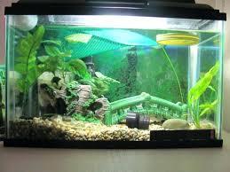 large aquarium rocks for sale glass aquarium rock leftover info
