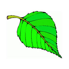 Leaves clipart animated 3