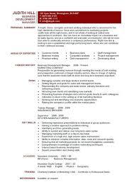 Development Resume Sample Business Executive