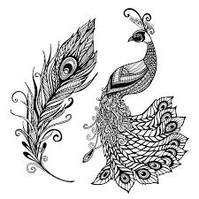 Peacock Feather Design Black Doodle Print Vector Art Illustration