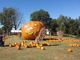 Pumpkin Patch Raleigh Durham Nc by October 2010 The Mycenaean