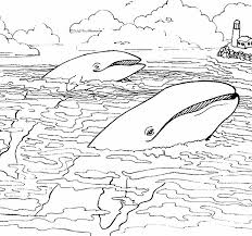 Free Printable Sea Creature Coloring Pages