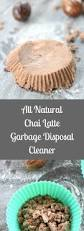 Garbage Disposal Leaking From Bottom Plate by Best 25 Garbage Disposals Ideas On Pinterest Garbage Disposal