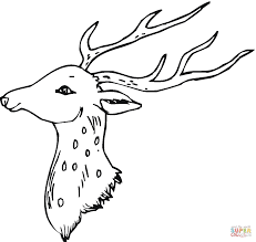 Click The Head Of Deer Coloring Pages