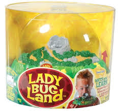 Live Butterfly Garden $19 99 We Just Got Ours