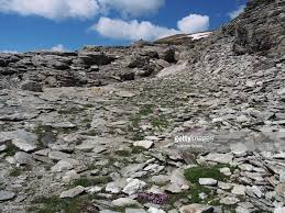 100 Rocky Landscape Moss Campion On The Of Mount Pizzo Diei Stock Photo