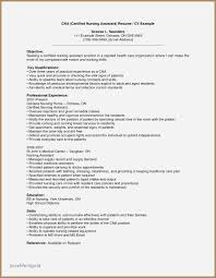 Information Technology Internship Resume Examples Unique Camp Counselor New Cover Letters For Summer Internships Jpg