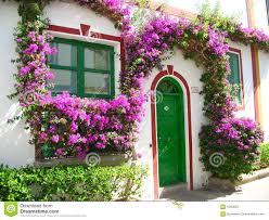 100 Blooming House House In Spain Stock Photo Image Of Everblooming