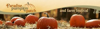 Pumpkin Patch Columbus Ga by Special Needs Day At Paradise Pumpkin Patch Muscogee Moms