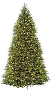 National Tree 10 Foot Dunhill Fir With 1200 Clear Lights Hinged DUH