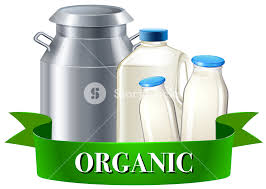Fresh Organic Milk In Bottles Illustration