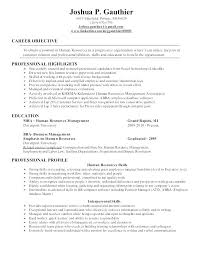 Resume Objective Examples For A First Job And Entry Level Marketing