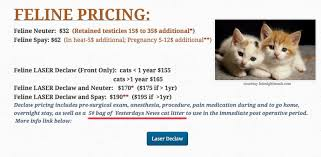 cost to declaw cat purina help us end declawing with some of the money you are