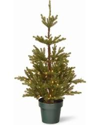 National Tree Co 4 Foot Imperial Spruce Potted Pre Lit Christmas
