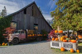 Barns | North Western Images - Photos By Andy Porter | Page 2 Xlentcrap Barns Flowers Stuff 2009 In Vermont The Fall Stock Photo Royalty Free Image A New England Barn Fall Foliage Sigh Farms And Fecyrmbarnactorewmailpouchfallfoliagetrees Is A Perfect Time For Drive To See National Barn Five Converted Rent This Itll Make You See Red Or Not Warming Could Dull Tree Dairy Cows Grazing Pasture With Dairy Barns Michigan Churches Mills Covered Mike Of Nipmoose Engagement Beauty Pa Leela Fish Rustic Winter Scene Themes Summer Houses Decorations