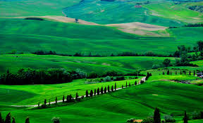 Wallpaper Tuscany 4k HD Italy Meadows Hills Pines