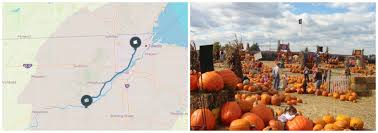 Ohio State Pumpkin Designs by 12 Last Minute Fall Trips From Toledo Ohio Story Matters