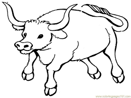 Coloring Pages Bull Mammals