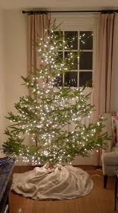 Best Variety Of Christmas Tree by 25 Beste Ideeën Over Real Christmas Tree Op Pinterest Kerst