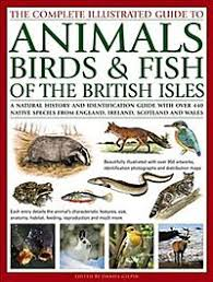 The Complete Illustrated Guide To Animals Birds Fish Of British Isles