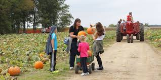Best Pumpkin Patches Indianapolis by Exploration Acres Serves Up Fall Fun
