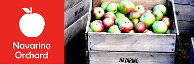Apple Pumpkin Picking Syracuse Ny by Navarino Orchard U2013 Onondaga Grown