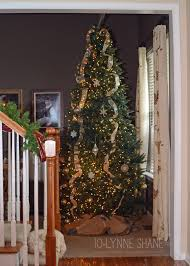 Christmas Tree Shop Syracuse Ny by Christmas Christmas Tree Storeons Michristmas Ny In Florida 41