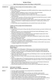 Assistant Manager Human Resources Resume Samples | Velvet Jobs