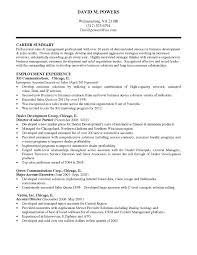Career Summary Examples For Sales It Director Resume