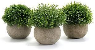 am höchsten bewertet in künstliche pflanzen und nützliche
