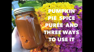 Splenda Pumpkin Pie Crustless by Fit And Fab Fall Collab Pumpkin Pie Spice Puree And 3 Ways To Use