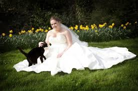 cat wedding dress interesting wedding traditions and facts a wedding chapel in las