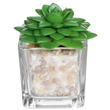 Fake Plants For The Bathroom by Amazon Com Small Glass Cube Artificial Plant Modern Home Decor