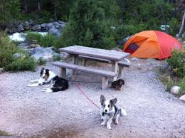 Sinks Canyon Wy Weather by Beautiful Camping With Three Dogs At Sinks Canyon State Park Next